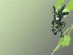 RX-BattleBunny