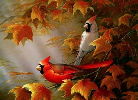 Autumn Cardinals - orange leaves, fall, leaves, cardinals, birds, autumn