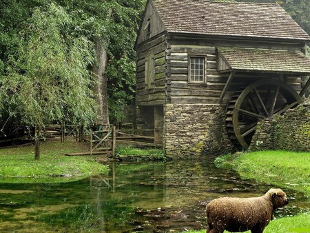 watermill - house, watermill, mill, nature, trees, lake