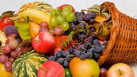 Cornucopia - cornucopia, food, photography, fruit, thanksgiving