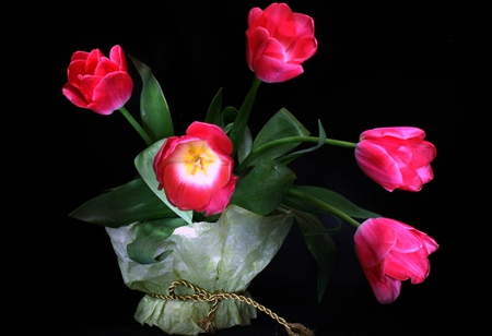 Tulips - with love, pretty, lovely, romantic, romance, beautiful, still life, pink tulips, photography, bouquet, flowers, beauty, nature, tulips, pink, tulip