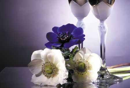 Something Special - table, stems, setting, tall, silver, elegant, still life, glass ware, purple, flowers, white
