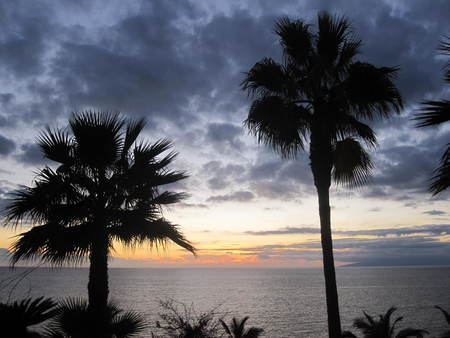 Sunset Tenerife - sunset, nature, tenerife, palms