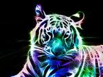 Beautiful Fractal White Tiger