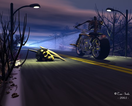 Helmet Laws Suck - protest, ghost, rider, road, street, lights, night, government