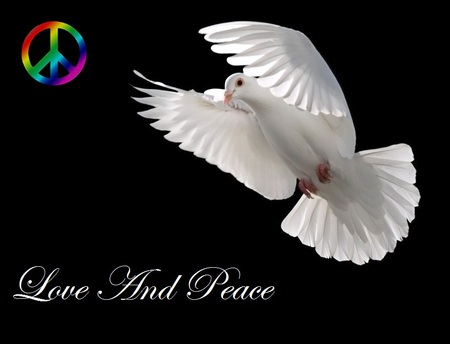 Love And Peace Birds Animals Background Wallpapers On Desktop