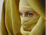 Veiled Beauty