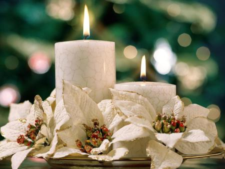 Christmas white candles photography abstract background christmas white candles beauty lovely christmas candles flowers lights mightylinksfo