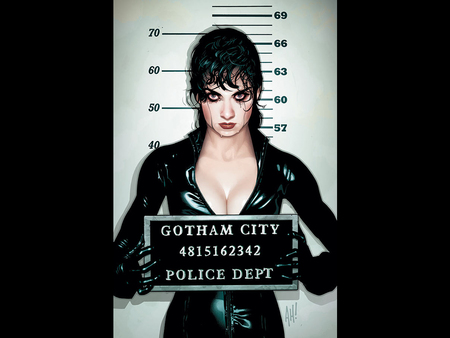 Mugshot - comic, fantasy, female, cat woman, mugshot