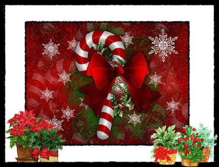 Candy Kane And Christmas Flowers 3d And Cg Abstract