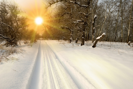sunset - snow, sun, path, winter, cool, forest, nice, rays, landscape, season, sky, sunset, beautiful, nature