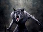 evil werewolf
