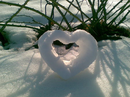 ๑♥๑ Garlands of Bright Hearts ๑♥๑ - Winter & Nature ...   Hearts In Nature Winter