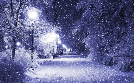 Beautiful Winter - lanterns, light, peaceful, tree, path, glow, forest, empty, winter, street lamps, pathway, snowflakes, lights, park, night, alley, cold, nature, trees, beauty, beautiful, lovely, snow, magical, snowy, season, falling snow, picture