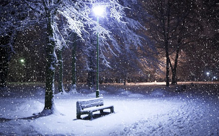 Winter Night - light, peaceful, walk, other, tree, forest, winter, snowflakes, lights, park, night, blue, cold, nature, beauty, beautiful, lovely, snow, pretty, bench, lantens, flakes
