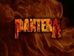 Pantera Fire