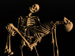 Skeleton with friend