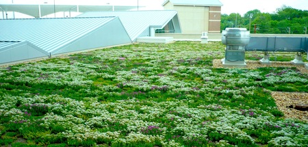 U.S. Social Security Administration Southeast Payment Processing - tecta america, green roofs, robert saul, angie durhman, 2009 greenroofs calendar, saul nurseries