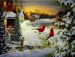 Cardinal's Christmas