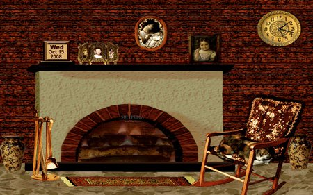 Cozy Winter Fireplace - beautiful, fire, living room, cat, photography, clock, chear, fireplace