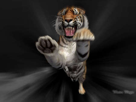 Tiger Attack Other Animals Background Wallpapers On Desktop