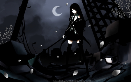 The end where it begins - death scythe, sakura petals, brs, hot, dark, sword, cute, beauty, huka, sexy, beautiful, black rock shooter, darkness, moon, anime girl