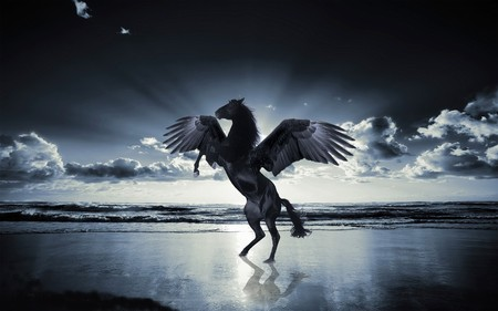 Pegasus - pegasus, sky, night, winter
