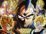 Vegeta v/s Goku