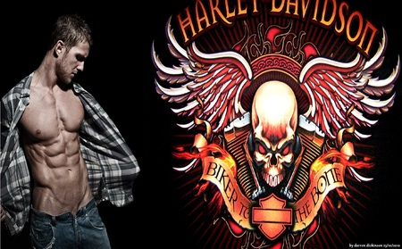 harley - bikes, male, model, logo
