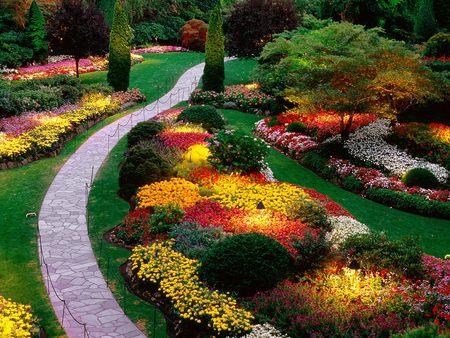 Butchart Gardens  - flowers, gardens, grass, path, trees, butchart, sunken, bushes, garden