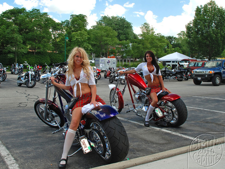 Biker Chicks - choppers, harley davidson, motorcycles, bikes
