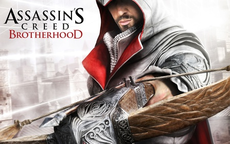 Assassin S Creed Brotherhood Other Video Games