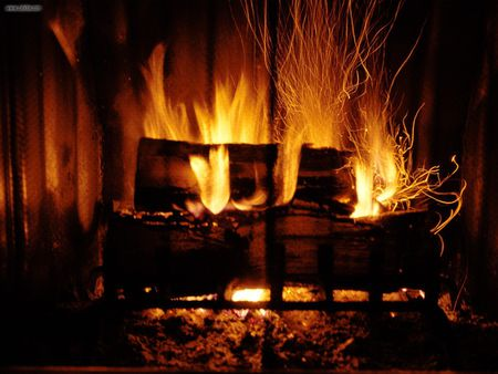 Roaring Fire - warm, fire, wood, roar, hot, awesome