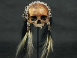 Asmat Trophy Skull