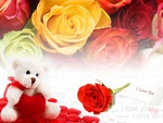 valentine bear and roses