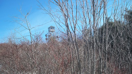 Pitcher Fire Tower - pitcher mountain, hiking, nh, view, stoddard, new hampshire