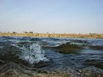 Chambal river,Rawatbhata