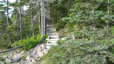 Acadia National Park Walk