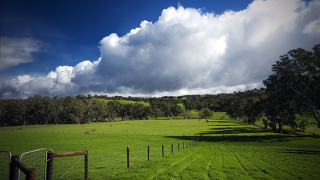 The Green Hills of Home - land, hills, fields, sheep, blue, sky, pasture, trees, nature, beautiful, cows, clouds, green, rural