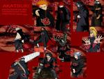 The Akatsuki Organization