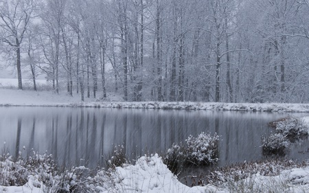 White Christmas - beautiful, snow, winter, pond, nature, forests