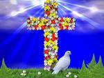 he as risen