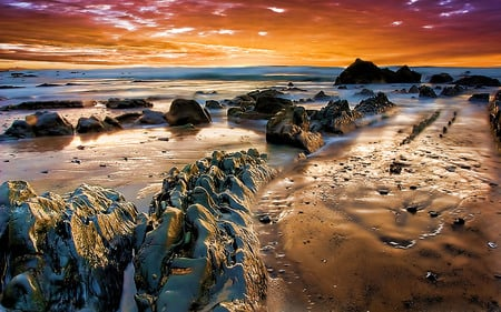 Just Awesome - texture, golden, rocks, beach, sunrise