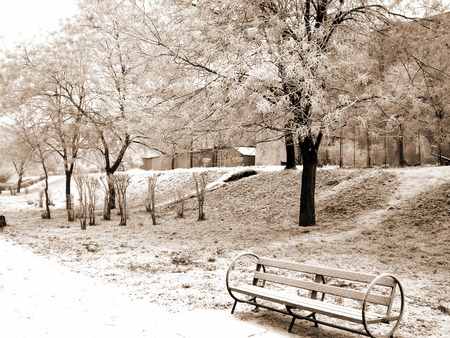 Frozen feelings... - park, snow, winter