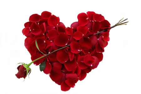 Heart - photo, red, romance, rose, beautiful, valentine, elegantly, photography, nice, cool, love, heart, flower, petals, harmony