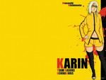 Kill Bill Karin