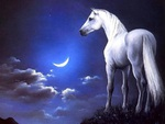Painting - The White Horse
