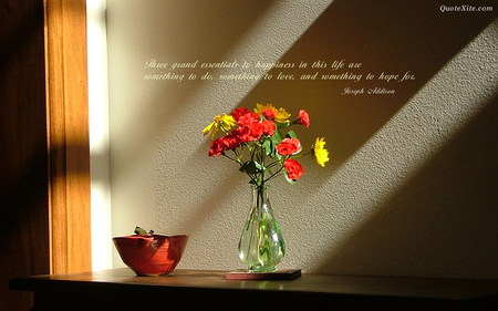 Hapiness quote - flower, hapiness, window, quote