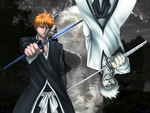 Ichigo & his Hollow