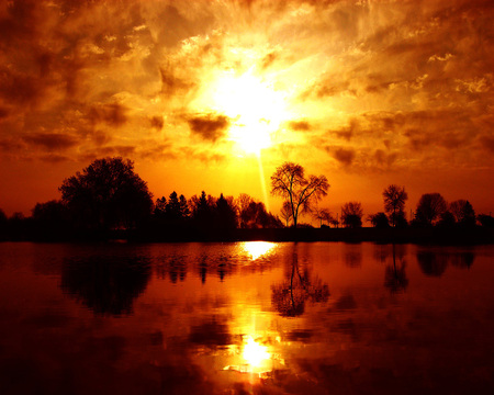 Gold Sunset - sun, background, afternoon, sundown, nice, gold, wallpaper, bright, waterscape, paisage, wood, sunbeam, sunrises, dawn, brightness, explosion, fire, sunrays, white, red, ambar, beautiful, leaves, amber, scenery, night, lakes, shadow, maroon, paisagem, day, nature, desktop, reflected, branches, pc, scene, orange, yellow, clouds, cenario, lightness, calm, scenario, beauty, forests, evening, islands, paysage, cena, golden, black, trees, lagoons, water, cool, awesome, sunshine, photoshop, fullscreen, landscape, brown, laguna, trunks, photography, sunsets, grove, mirror, river, light, tranquility, amazing, photo, leaf, plants, reflections, natural